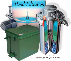 Natural pond filters pond filtration systems hemphill 39 s for Pond water purification system