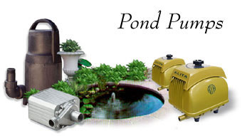 Pond pumps by alita alpine atlantic aquascapes beckett for Garden pond do you need a pump